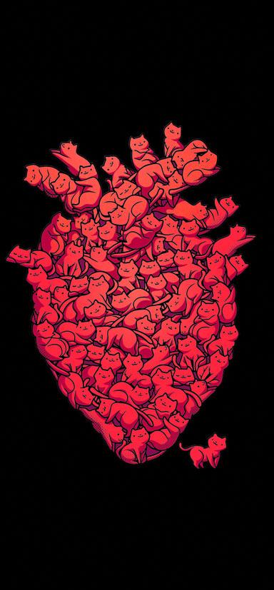 I LOVE CAT HEART