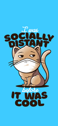 Socially Distant Cat