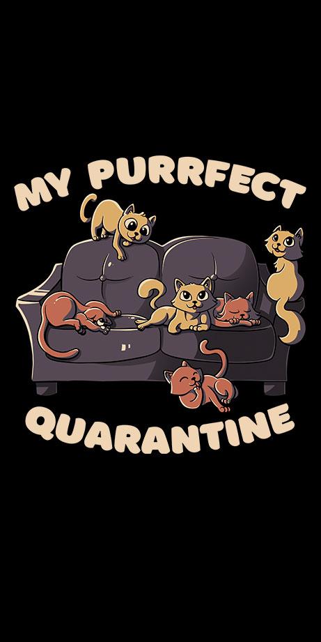 My Purrfect Quarantine