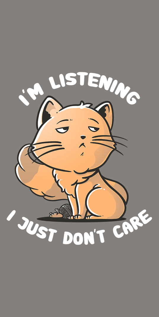 I'm listening I just don't care